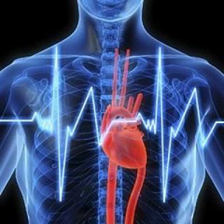 Cardiovascular Associates, P C  – Mobile, AL